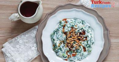 Spinach Borani Recipe, How to make Spinach Borani ? Turkish Food Recipes. Turkish Food Blog