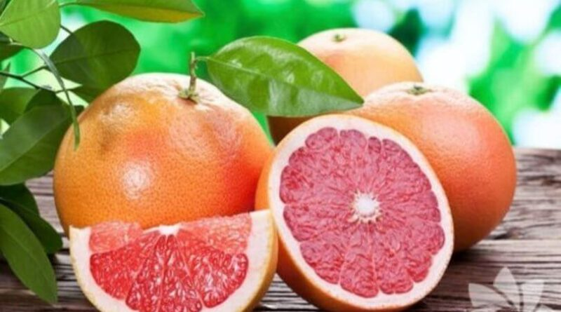 What are the benefits of grapefruit What is grapefruit good for