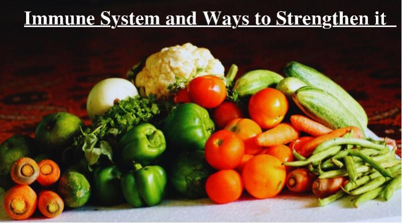 Immune System and Ways to Strengthen it